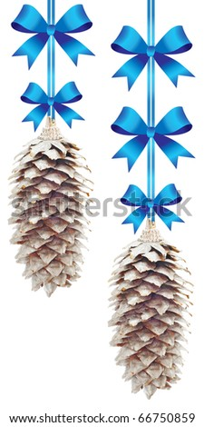 pine cones with blue bows on white background