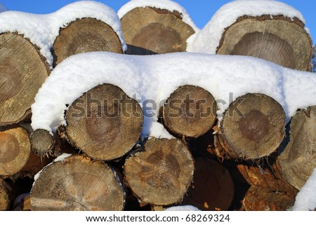 Pine Logs Under Snow, suitable for Backgrounds - stock photo