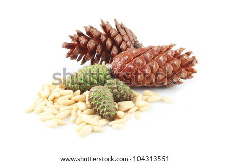 how to grow pine nuts from seed