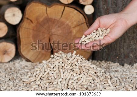 Pine pelett-Alternative Energy - stock photo