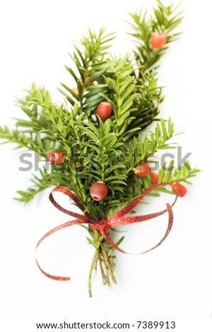 pine sprig with  red ribbon - stock photo