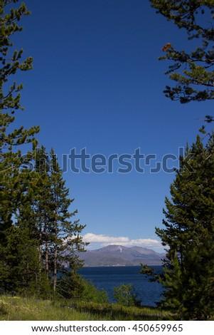 Pine tree branches frame a beautiful view of Yellowstone Lake with the Absaroka Range of mountains on the horizon - stock photo