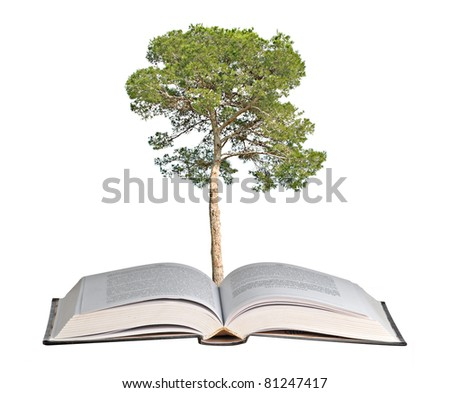 pine tree growing from book