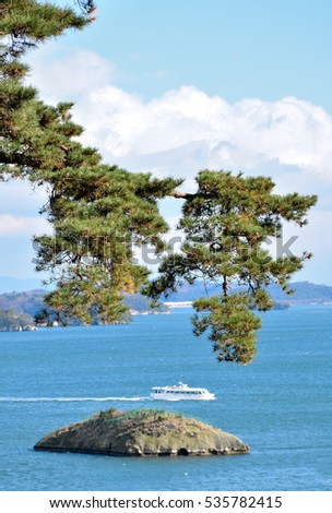"Pine tree of Matsushima. The meaning of ""Matsushima"" is ""Islands of the pines""."