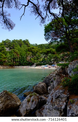 Pine trees and rocks the coast of Glifoneri Beach with amazing clear sea, Thassos, Greece.