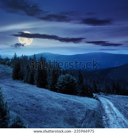 pine trees near the path through meadow  on the hillside. forest in haze on the far mountain at night in full moon light - stock photo