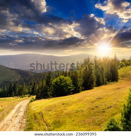 pine trees near the path through meadow  on the hillside. forest in haze on the far mountain in sunset light - stock photo