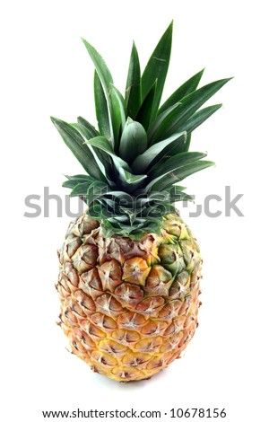 pineapple and leaves  isolated on white background fruits vegetables and agriculture concepts