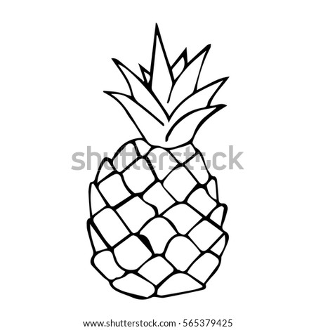 Pineapple On White Background Illustration With Leaf Icon Tropical Fruit Isolated