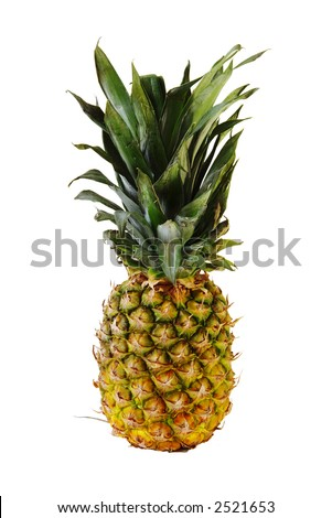 Pineapple - upright and isolated on white