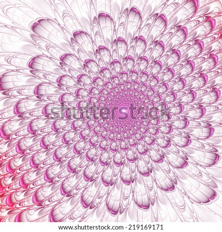 Pink abstract fractal flower petals on white background - stock photo