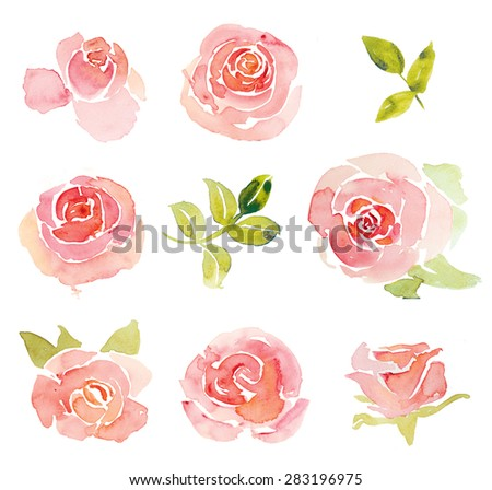 Pink abstract roses flower elements watercolor - stock photo