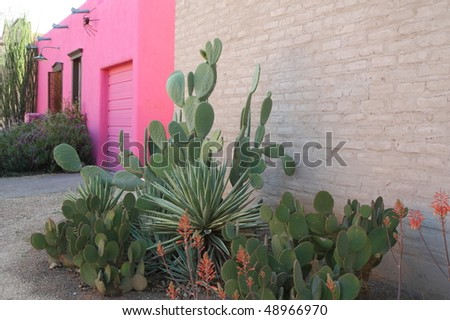 "pink adobe in the ""Barrio Historico,"" Tucson - stock photo"