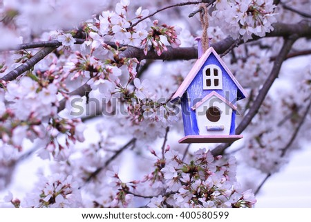 Pink and purple birdhouse hanging from spring flowering tree branch; white blossoms blurred in background - stock photo
