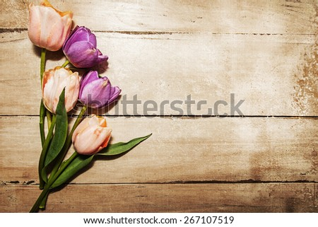 Pink and Purple Tulips resting on an old wood table with room for text. Aged textured photo filter effect applied. - stock photo