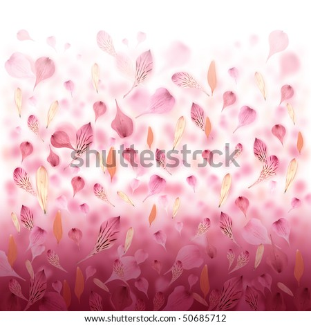 Pink and red flower petals are falling creating a love valentine background. Can also be used for an abstract background for Mother's Day, an anniversary or beauty concept. - stock photo