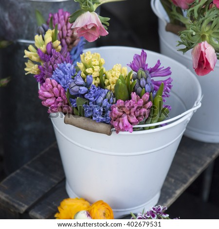 Pink and violet, yellow hyacinths in pot - stock photo