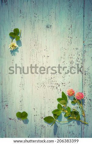 Pink and white clover flowers on old wooden board, border/frame composition, toned photo, vintage colors - stock photo