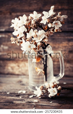 Pink and white flowers in a vase. - stock photo