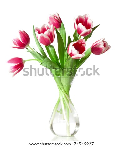 pink and white tulips in the transparent vase isolated on white. - stock photo