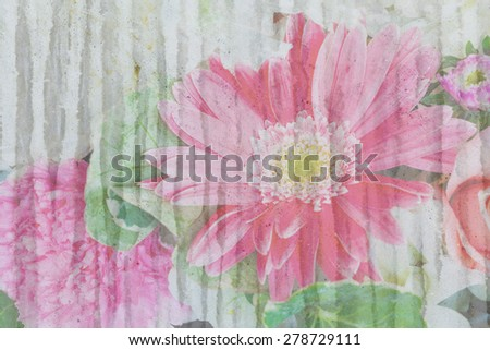 pink bloom flower on grunge wall background - stock photo