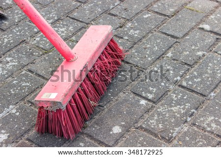 pink broom on cobblestones / pink broom / broom