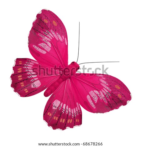 Pink butterfly - stock photo