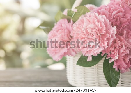 Pink carnations in the basket with the morning light. - stock photo