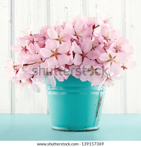Pink cherry blossom flower bouquet on light blue vintage and white wooden background - stock photo