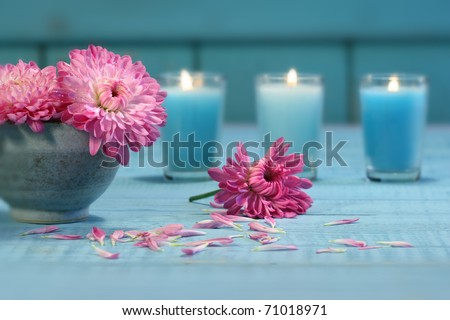 Pink chrysanthemum flowers in bowl of water with candles - stock photo
