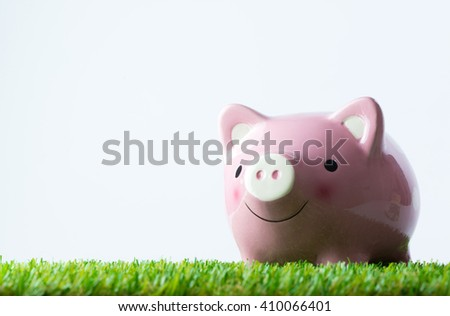 Pink color piggy bank on green field