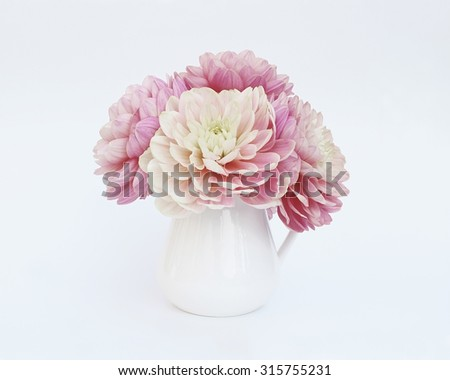 Pink dahlias in white jug on a light background - stock photo