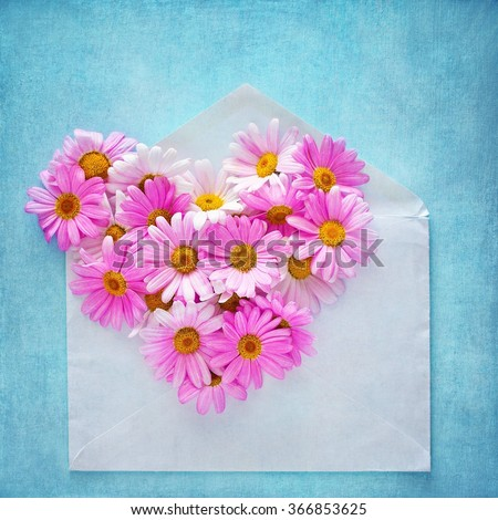 Pink daisies in the shape of a heart and envelope on a textured blue background. - stock photo
