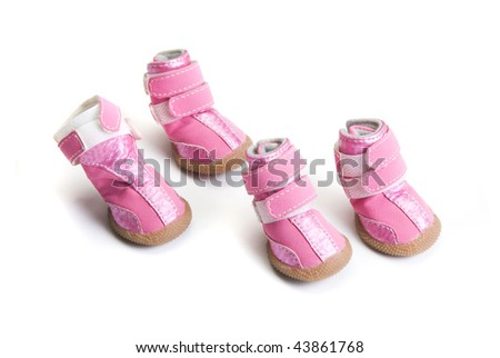 Pink dogs boots isolated on a white background