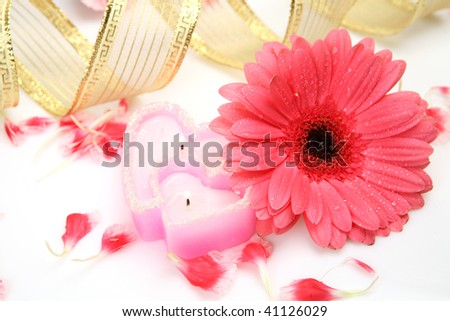 Pink flower and candle