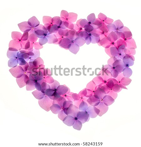 Pink flower background in shape of heart close up. Romantic and love pattern - stock photo