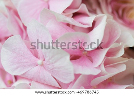 Pink flower decoration