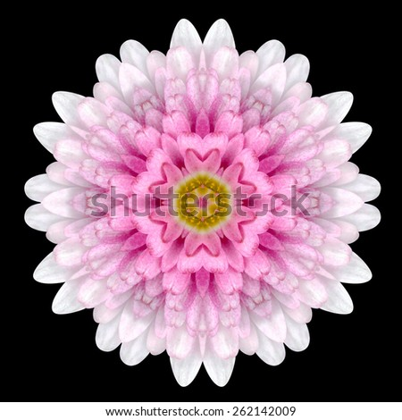 Pink Flower Mandala. Kaleidoscopic design Isolated on Black Background. Mirrored pattern - stock photo