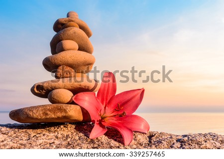 Pink flower of lily and stones on the seashore - stock photo