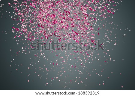 Pink flower petals failing down on dark background - stock photo