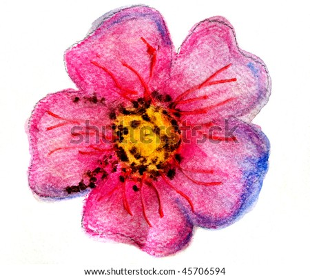 Pink Flower Real Watercolor Close Up, Painted By The Photographer - stock photo