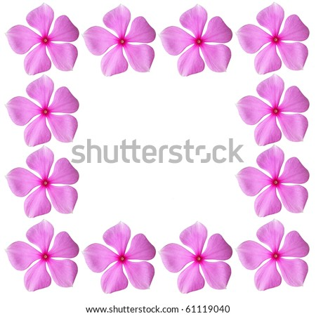 Pink flowers frame with blank space - stock photo