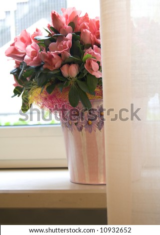 pink flowers in a vase near the window - stock photo