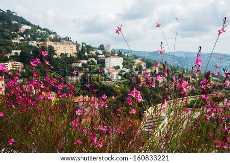 Pink flowers in the garden with the background of Grasse city, Provence, France - stock photo