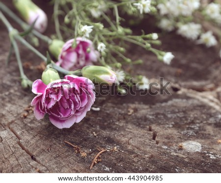 Pink flowers in vintage tone. - stock photo