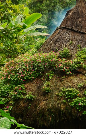 Pink flowers on the thatched roof of a kogi hut in Northern Colombia built in the traditional style of the Tayrona - stock photo