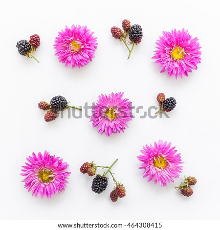 Pink flowers. On white background. Flat lay.