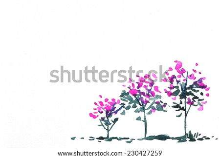 pink flowers  watercolor hand-painted, isolated on white - stock photo