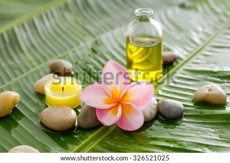 Pink frangipani and stones ,oil with burning candle on wet banana leaf  - stock photo