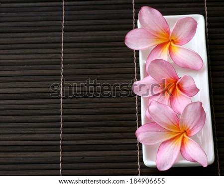 Pink Frangipani With Spa Concept - stock photo